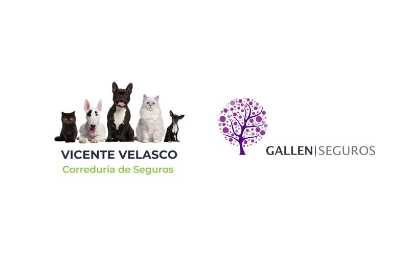Acuerdo Vicente Velasco Gallen Seguros